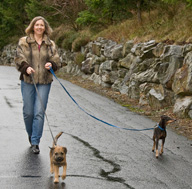Ellen L. Walker out walking her dogs.